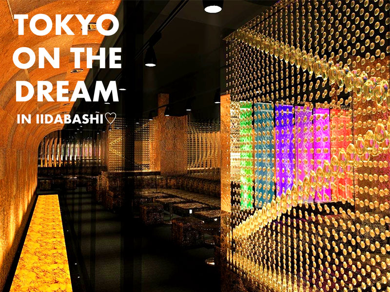 Tokyo on the Dream Bunny Editionロゴ
