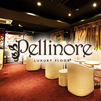 LUXURY FLOOR Pellinore